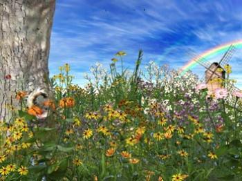 Время весны анимированная заставка